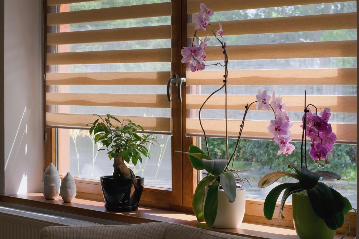 Żaluzje dzień noc to tanie rolety. Montaż rolety jest łatwy i sprawdzi się na każdym oknie.