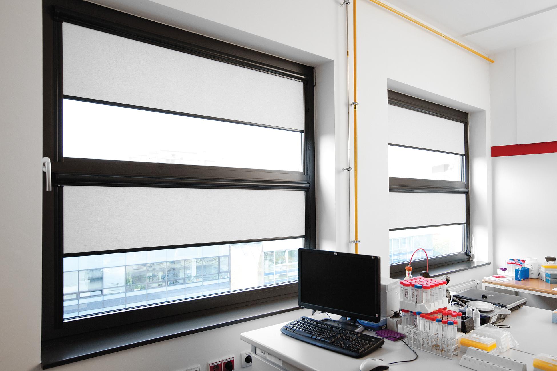 Rolety wewnętrzne w kasecie zapewniają optymalne warunki do pracy w biurze.